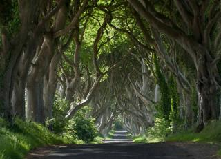 Game Of Thrones Slieve Donald Resort Northern Ireland