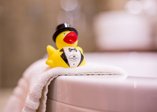 The life of a Hastings Hotels duck is certainly an interesting one